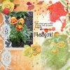 Marigold-web.jpg